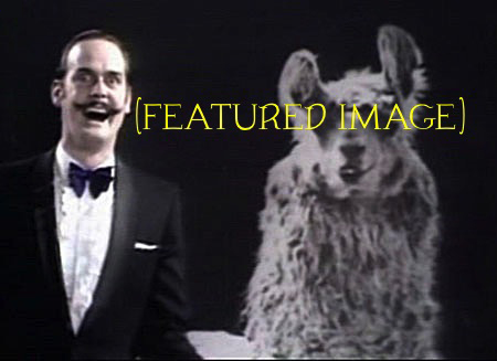 this llama alt is a featured image